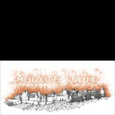 Carcassonne, Voeux